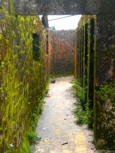 bokor hill station ruins