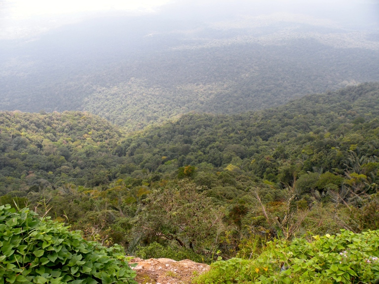 cambodian jungle view from bokor mountain