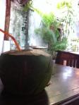coconut juice for breakfast in Cambodia