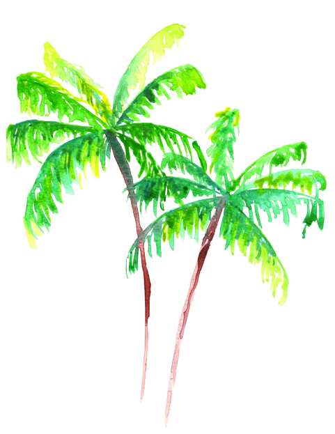 palm tree watercolor